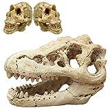 Decoraciones de pecera Decoración de acuario Pequeños Adornos Accesorios Escondite de peces Dinosaurio Calavera Set (Dinosaurio Calavera)