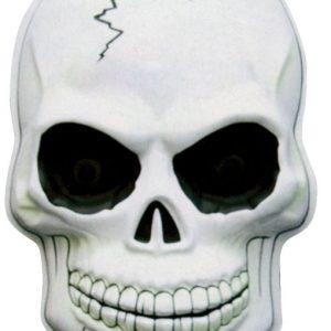 disfraces halloween calaveras